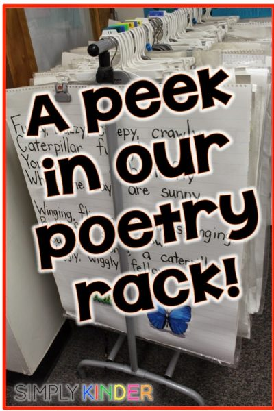 A Peek in my Poetry Rack!