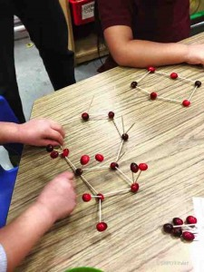 Using real cranberries to make structures and shapes! Great kindergarten, preschool, or first grade activity for the holiday season!