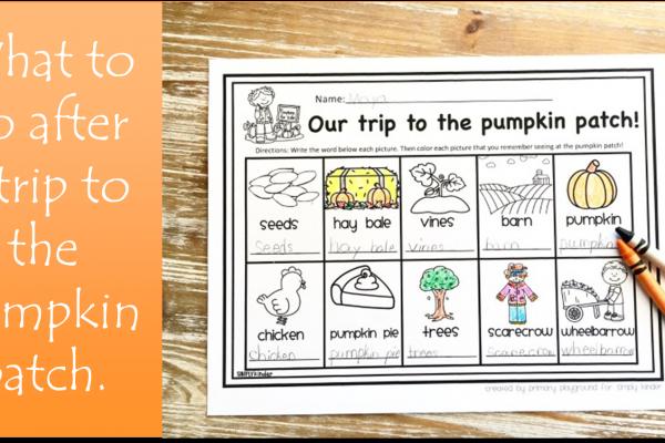 Pumpkin Patch Field Trip
