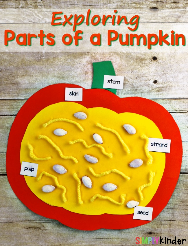 Parts of a Pumpkin, Exploring Parts of a Pumpkin, Science, Hands-On Science, Pumpkin Craft, Parts of a Pumpkin Craft
