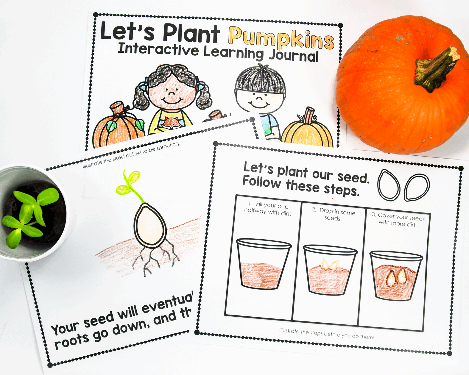 Planting Pumpkins in Kindergarten can be easy with this fun book.