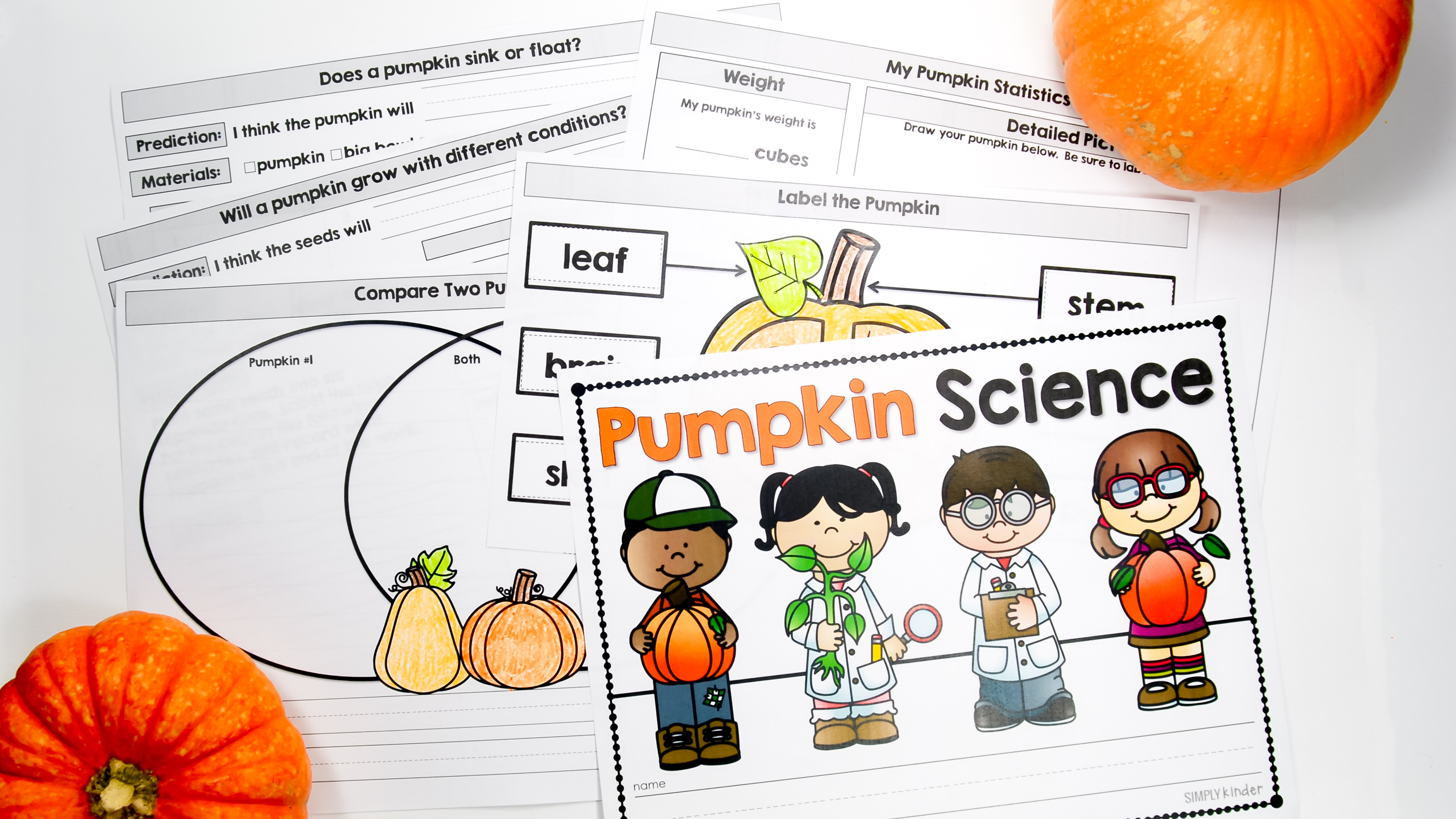 Easy Pumpkin Science Experiments for Preschool, Kindergarten, and First Grades.
