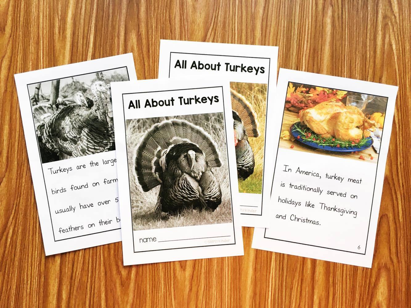 Nonfiction Thanksgiving Books with matching activities. Great for preschool, kindergarten, and first grades.