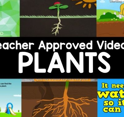 Videos About Plants