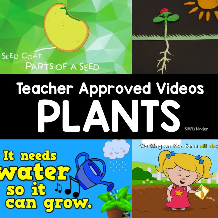 Teacher Approved Video List all about Plants. Everything from the life cycle of plants to how to plant them! These videos about plants are perfect for preschool, kindergarten, and first grade students.
