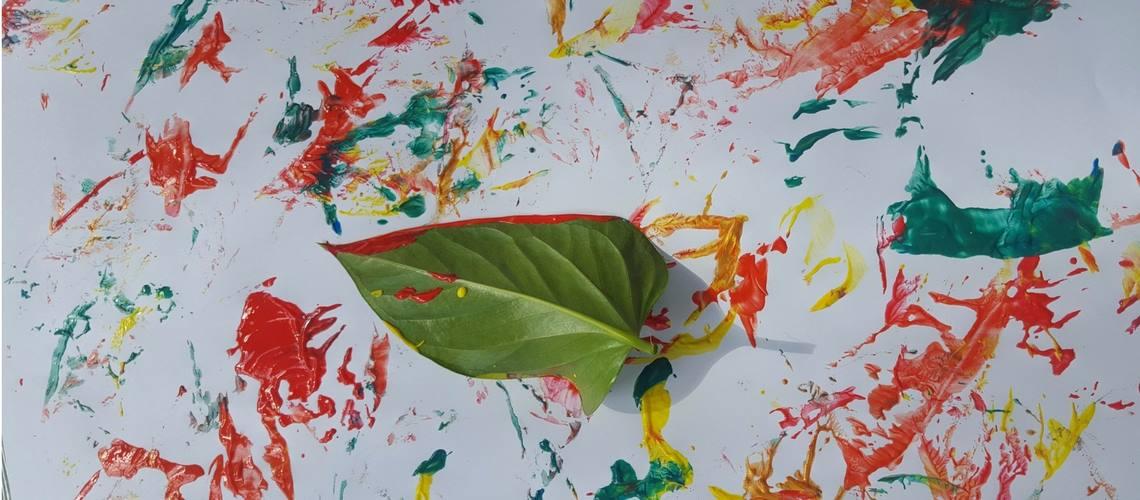 Fall Color Process Art