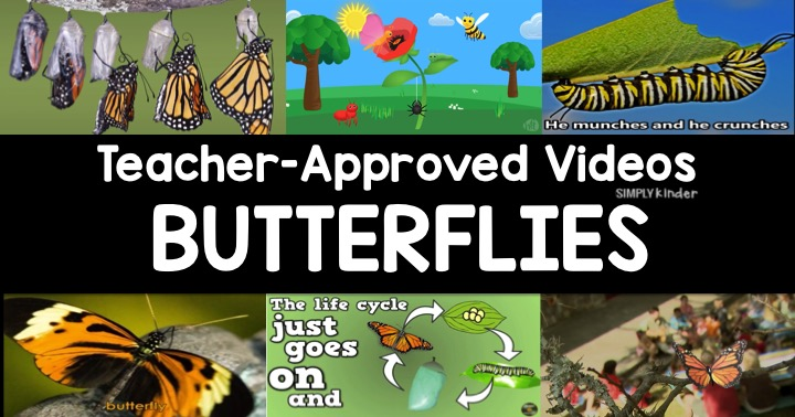 Butterfly Life Cycle Videos for Kids