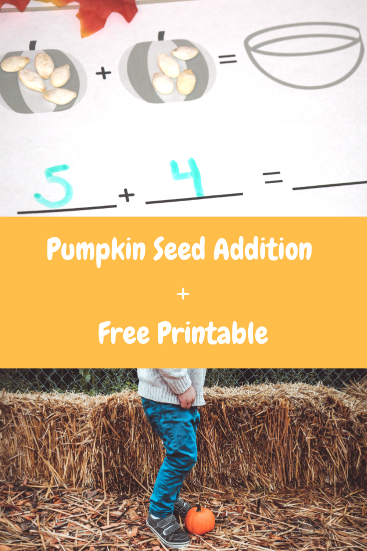 pumpkin seed addition