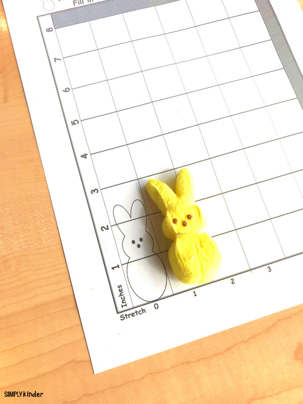 Kindergarten math activity using PEEPS marshmallow bunny.
