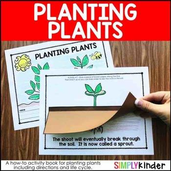 Planting Plants – Plants Kindergarten – Plant Life Cycle