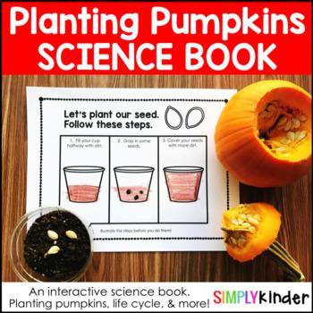 Pumpkin Life Cycle – Planting Pumpkins