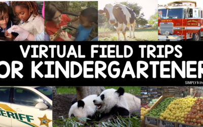 Virtual Field Trips For Kindergarteners